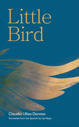 Little Bird book cover