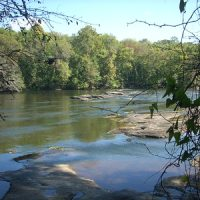 Scene of the Cape Fear River, featuring a fish trap rock formation, with trees visible across the water
